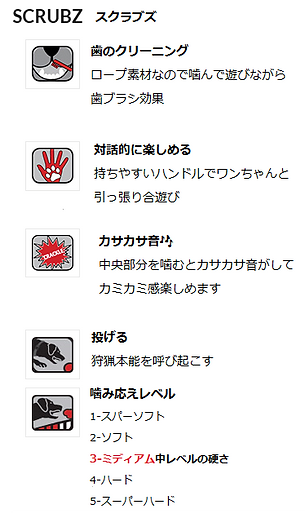 スクラブズ日本語表記.png
