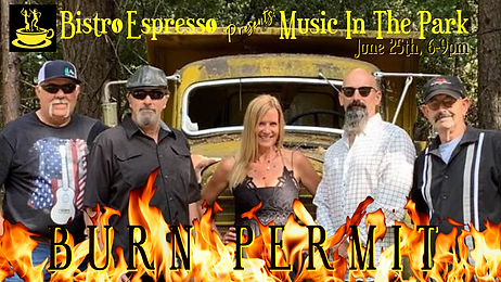 Music In The Park_Burn Permit.png
