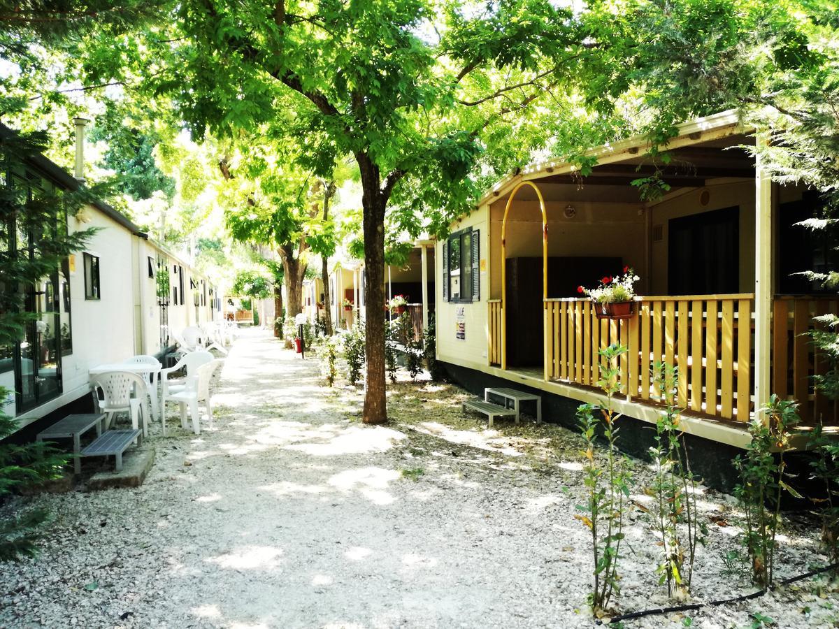 campingtiber3.jpg