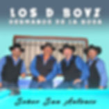 Los D Boys - Senor San Antonio copy.jpg