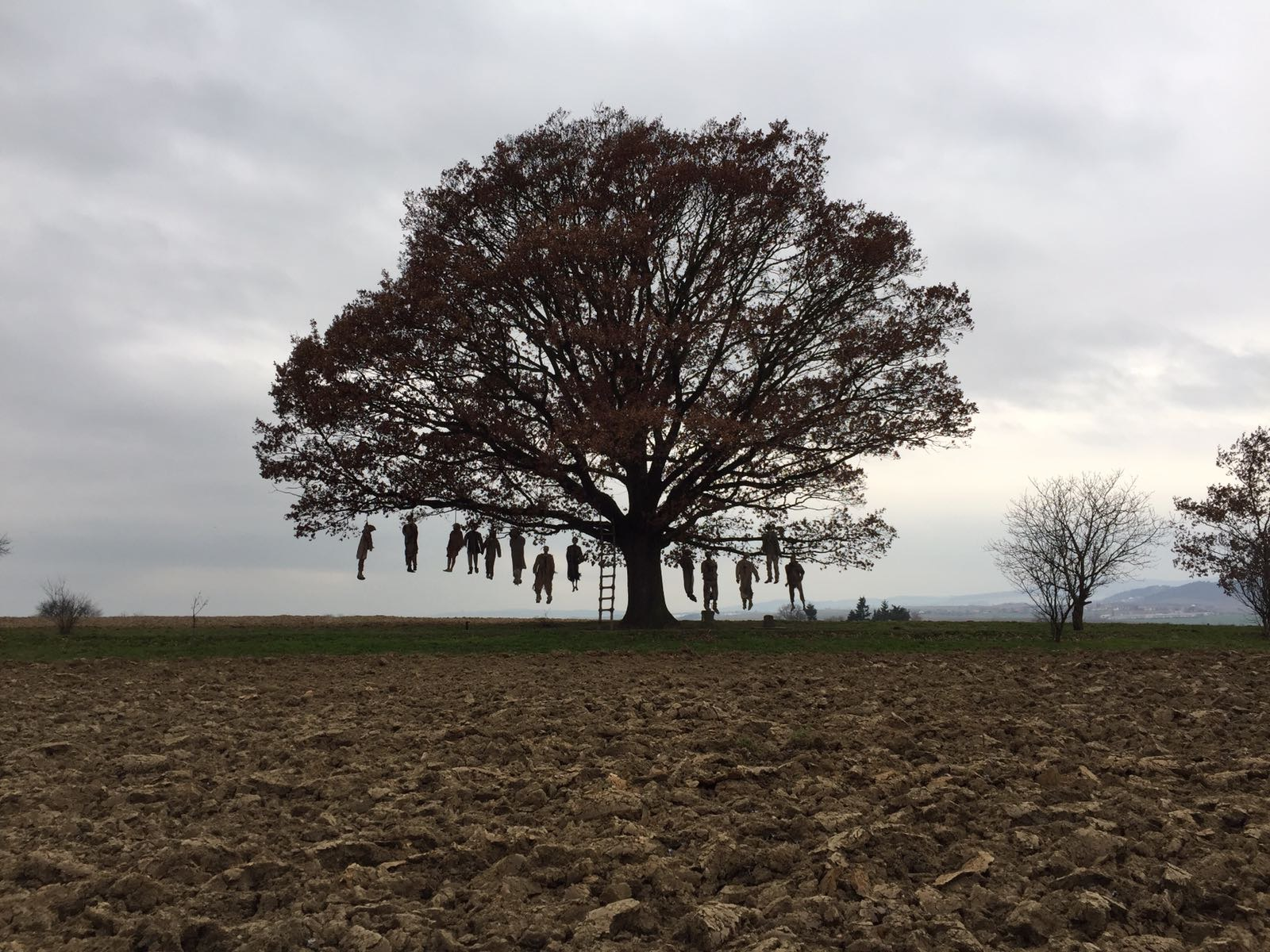 the hangeds tree