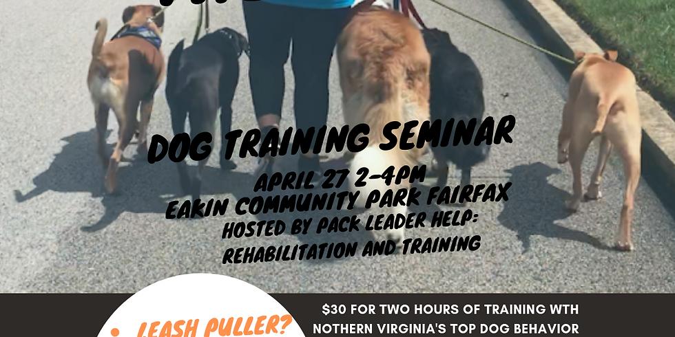 Conquer the Walk Dog Walking Seminar
