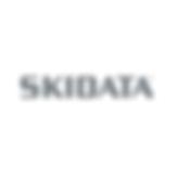 SkidataLogo.png