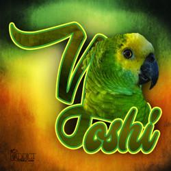 Yonyon Esteves - 24H G - Yoshi - Oiseaux