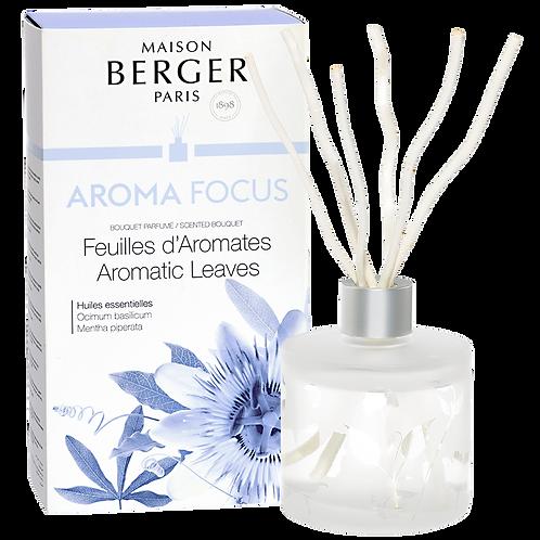 BouquetParfumé Aroma Focus