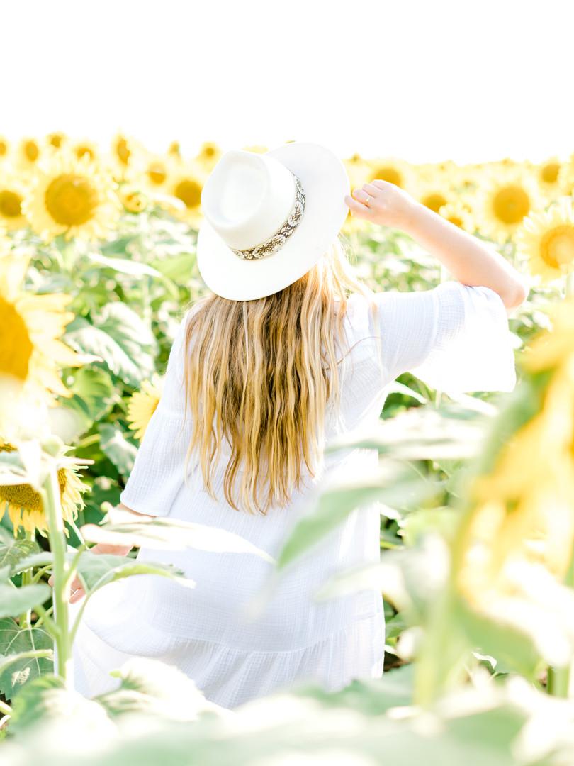 sunflower-74.jpg