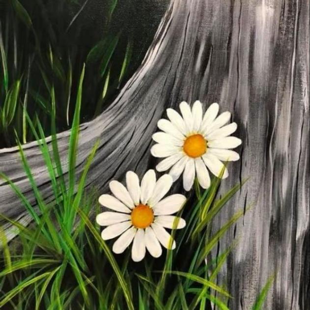 Canvas 11/02 $49
