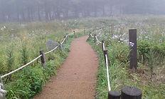 하늘숲공원(만항재).jpg