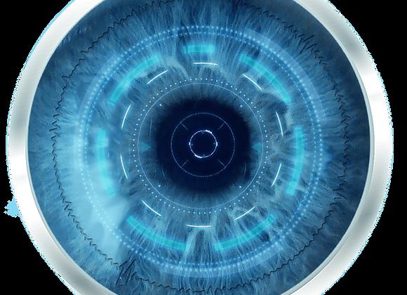 Prosthetic (Artificial) Eye
