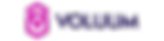 Voluum_logo.png