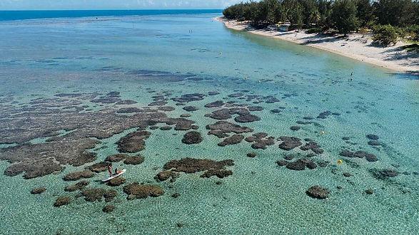 Plage-de-LErmitage-coraux-paddle-cartede