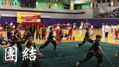第十七屆香港國際武術節