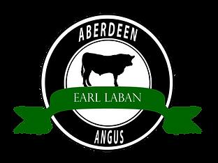 Elevage de vaches Angus dans le sud ouest