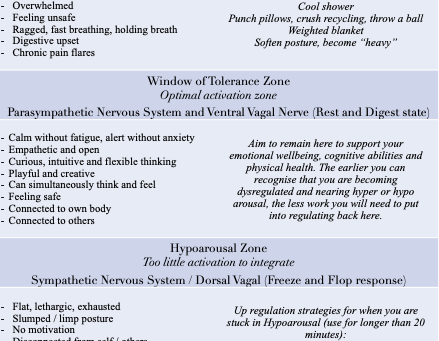 The Window of Tolerance and Nervous System Regulation