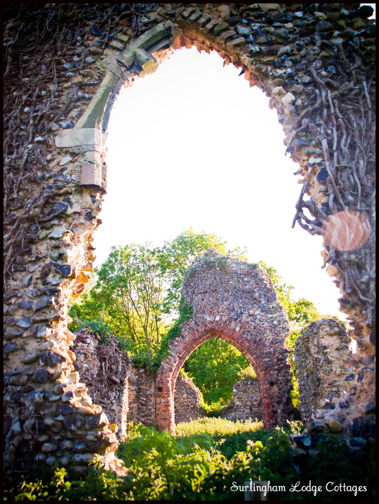Ruins in Surlingham