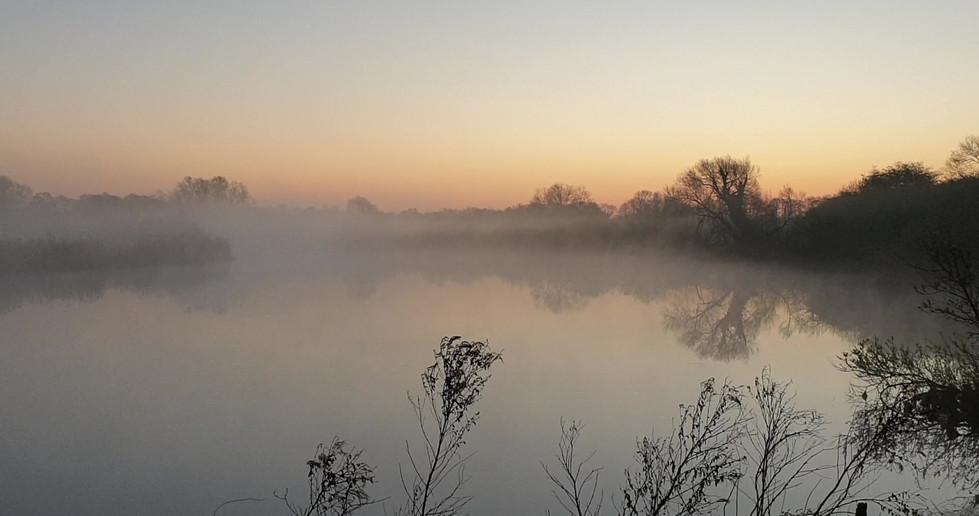 RSPB Surlingham Marsh