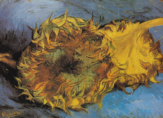 van Gogh's Color Palette