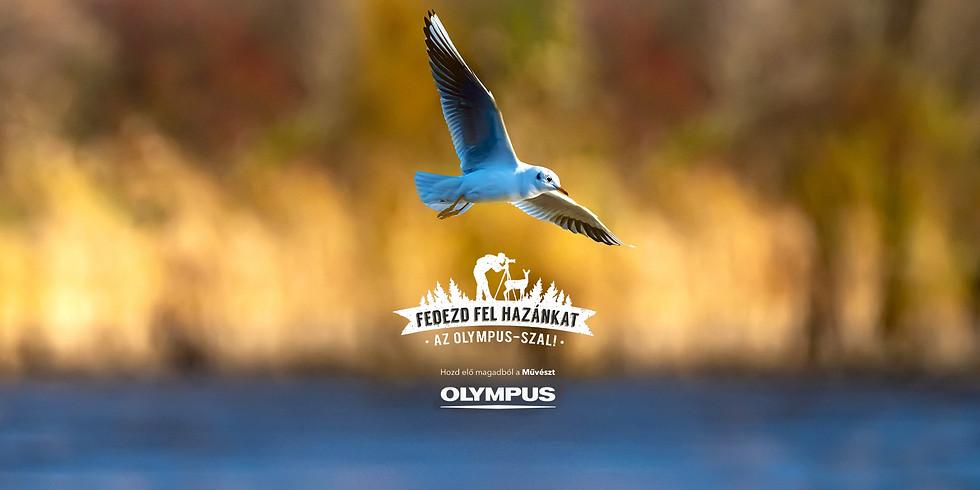 Fedezd fel hazánkat az Olympus -szal! 2021