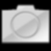 PortraitPro-logo.png