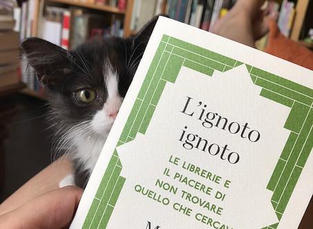 Ode alla buona libreria