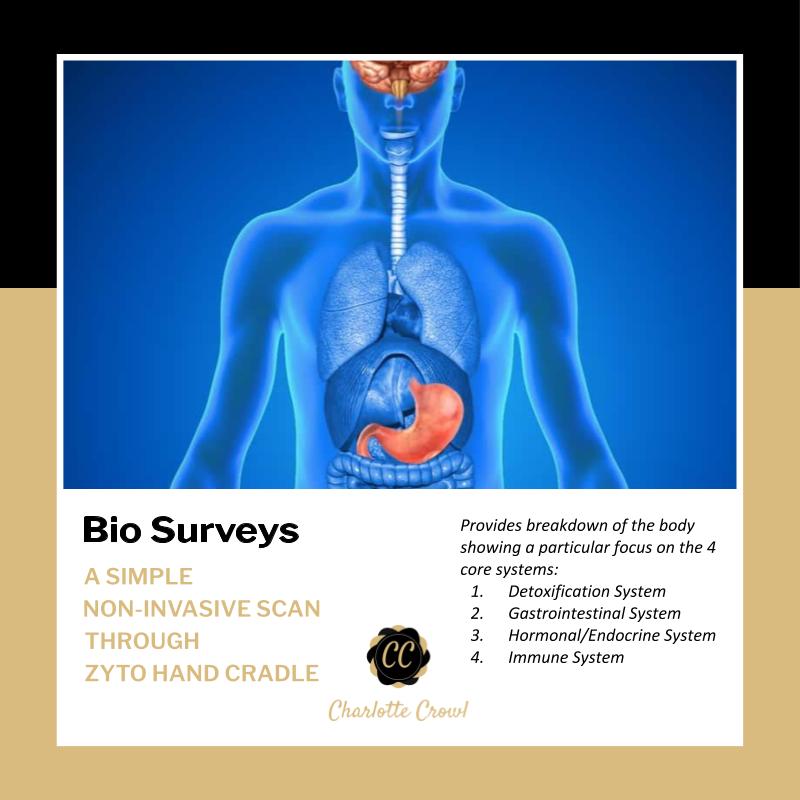 Bio Surveys  (from £90, 60+ minutes)