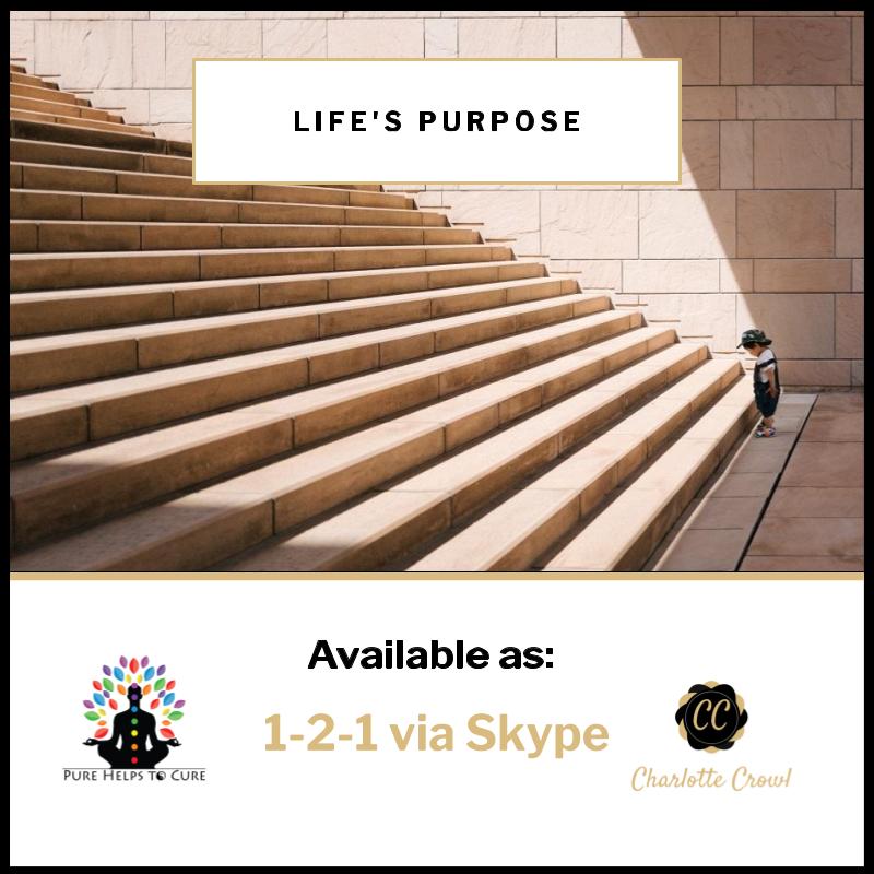 Lifes Purpose.png