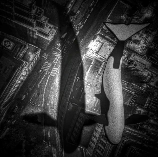 IMANOU_—_Orca_(Cover_Art).JPG