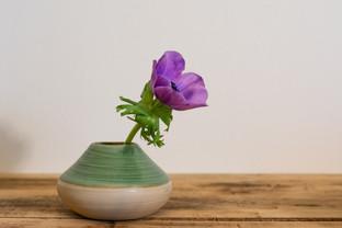 Vase et fleur!
