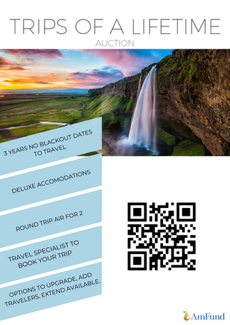 Trips of a Lifetime Auction Flyer.png
