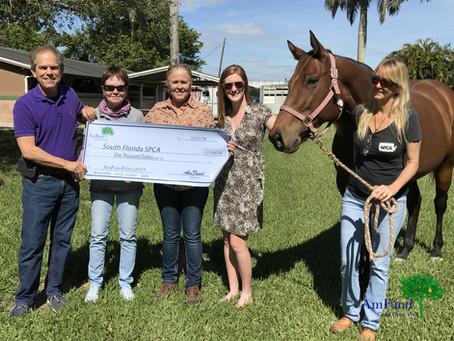 #AmFundGives2019 Grant Recipient - South FL SPCA