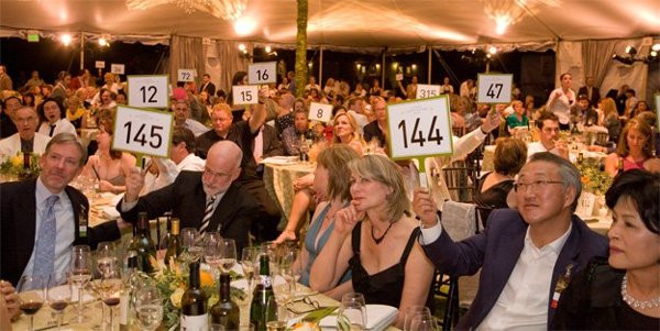 Gala Open Ask with Bid Paddles