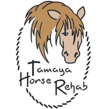 tamaya horse rehab.jpg