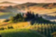 Tuscany Italy Vineyards Villa