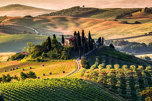 Tuscany Italy Vineyards Villa