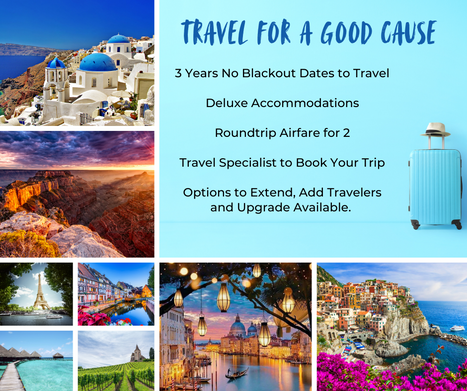Travel for a Good Cause Bullet Points.pn