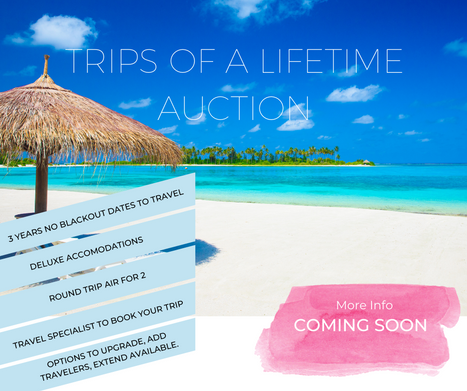 Trips of a Lifetime FB Promo.png