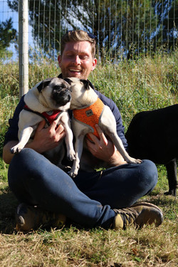 Pug love at Doggy Day Care Cornwall