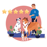 Doggy Day Care Cornwall Five Star Rated
