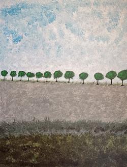 Route bordée d'arbres 2019