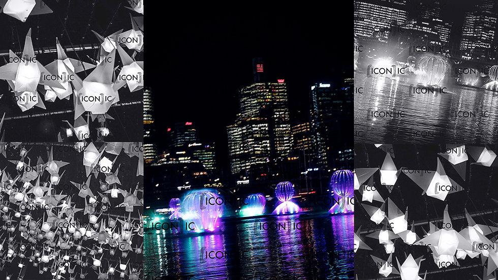 PP26: Vivid Sydney