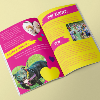 Colour Frenzy Brochure 01.png