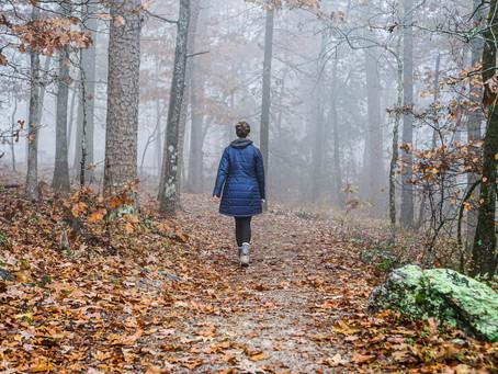 The Mist // La Niebla