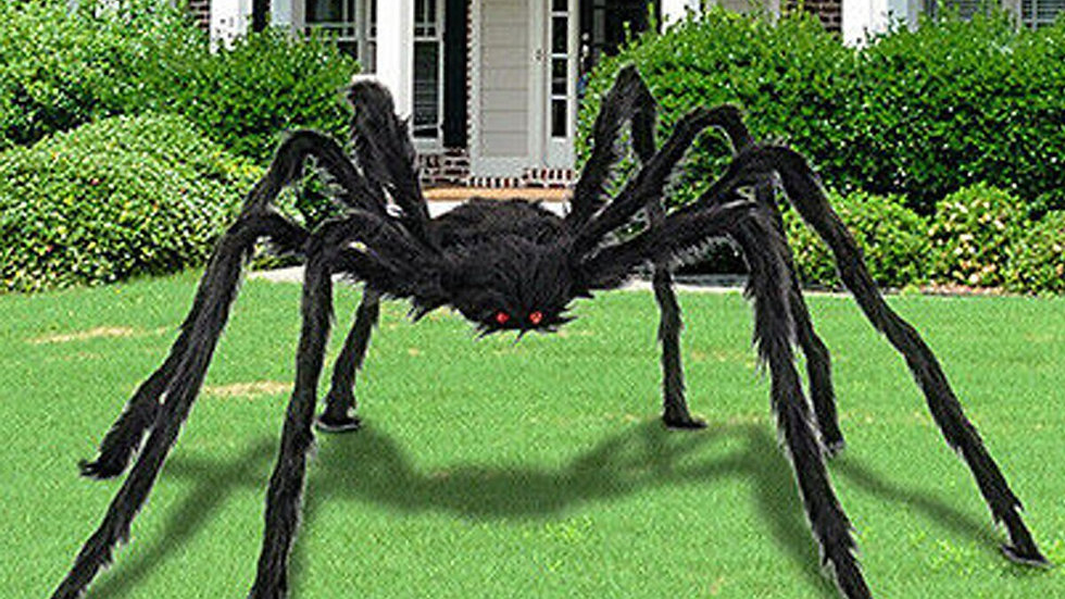 5ft/6.6ft Giant Black Spider Halloween Decoration Props Plush Simulation