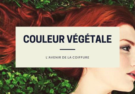 Les couleurs végétales : l'avenir de la coiffure
