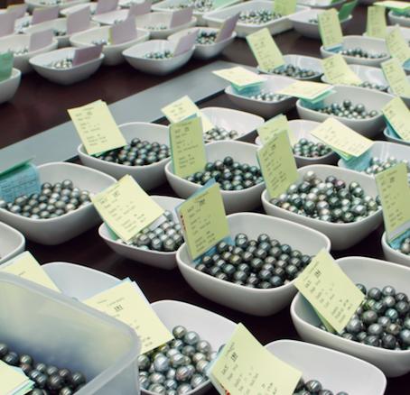 Angebot & Nachfrage: Die aktuelle Lage auf dem Perlenmarkt