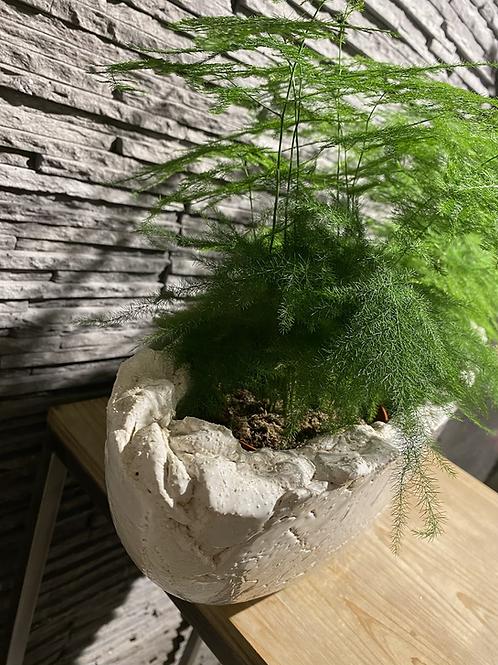 Planter ovaal van pottenbakker Prosman