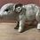 Thumbnail: Zilveren spaarvarkentje