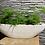 Thumbnail: Planter ovaal van pottenbakker Prosman