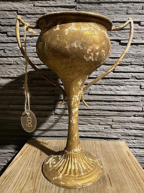 Gouden coupe - EDG