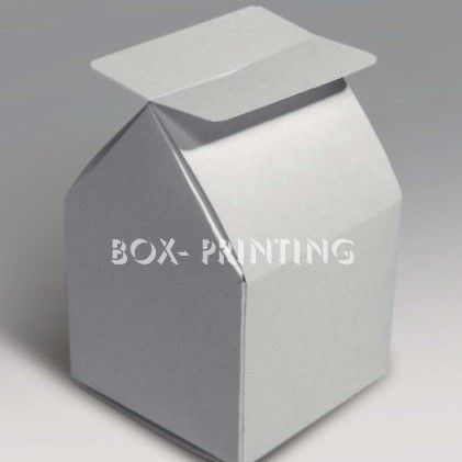 boxprinting15.jpg